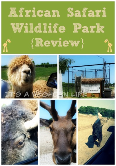 African Safari Wildlife Park {Review}
